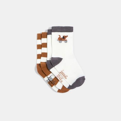Toddler boy sock duo