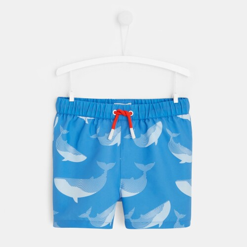 Whale swim trunks